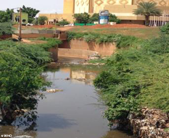 Example of sampling locations by WHO (Niamey, Niger)
