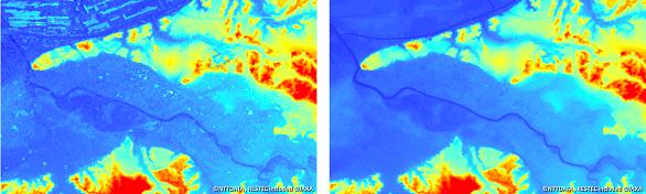 5m解像度DSMとDTMの比較(千葉)