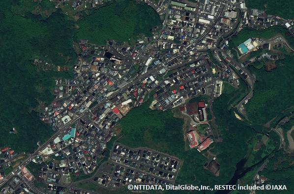 Ortho (Nagasaki)